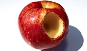 La pomme croquée par Eve a été retrouvée dans des fouilles archéologiques à Césarée, identifiée par un prélèvement ADN (photo Institut National d'Archéologie)